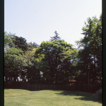 飛鳥山公園 2