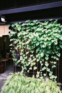 高山(130902) #03