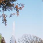 舎人公園(131207)#03