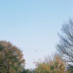 舎人公園(131207)#07