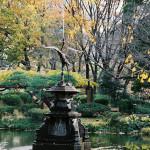 日比谷公園(131208)#11
