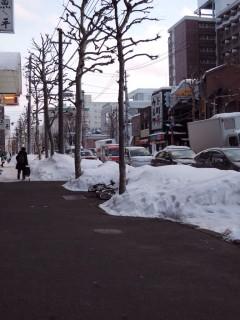 札幌の雪は