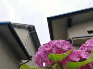 6月8日 梅雨入り
