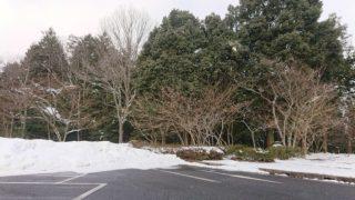 1月29日 雪の高速