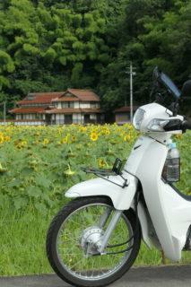 スーパーカブでひまわりとかオートバイ神社とか(2018/07/21)