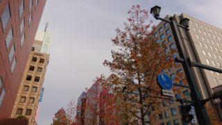 11月16日 久しぶりの広島