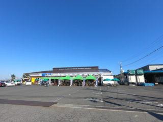 スーパーカブ110で知多半島へ(2018/11/25)