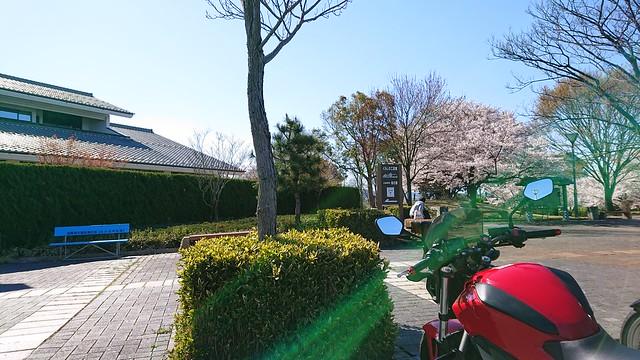 琵琶湖一周ツーリング(19/04/13)