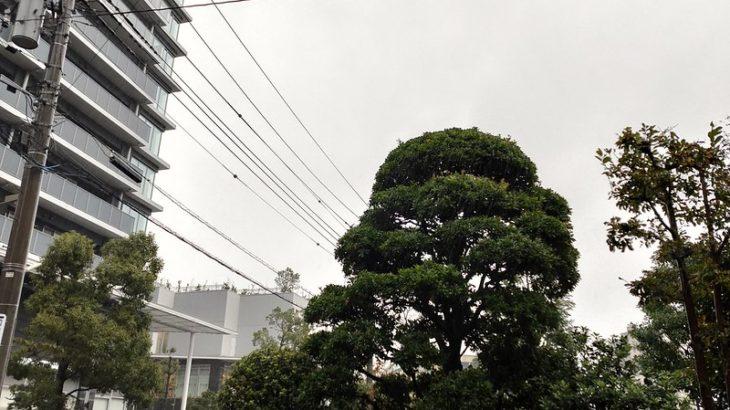 10月25日 大雨